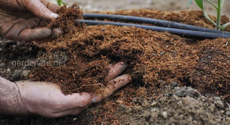 Какие животные удобрения допустимо использовать в органическом производстве?