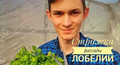 prasol_mikhail_20200409_222027_0