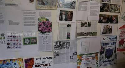 15 лет секции сенполии в Киеве.JPG