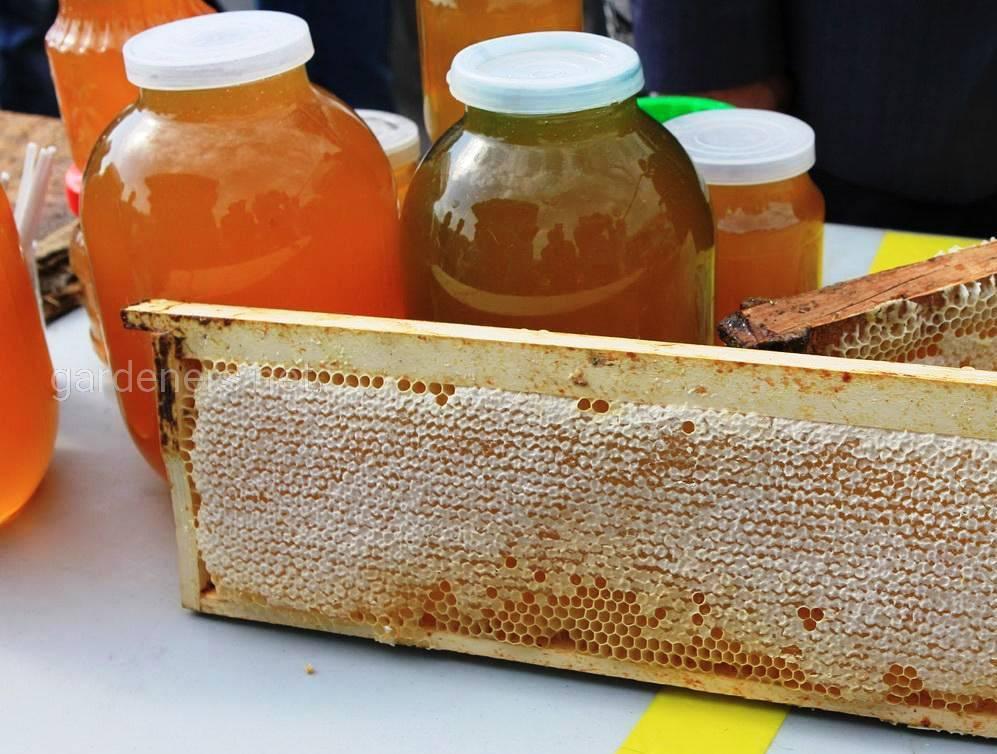 мед в России