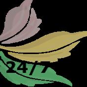 Круглосуточная доставка цветов Брест. САФИНА
