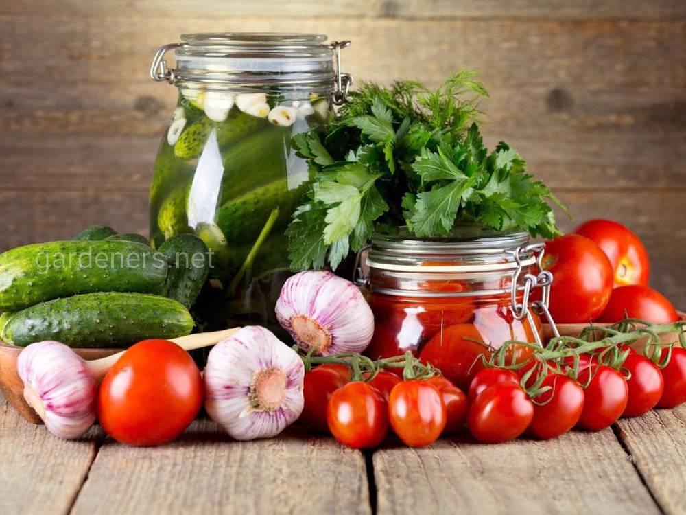 Простые и вкусные рецепты закаток