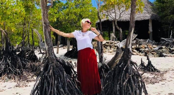 Танзания. Мангровые деревья в воде