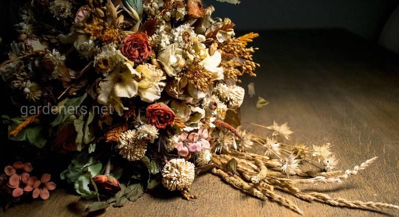Дари природи в інтер'єрі: прикраса будинку сухими травами