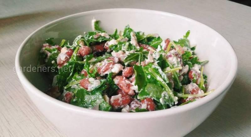 Салат из красной фасоли с творожным сыром, красным луком и сезонным салатом. Рецепт