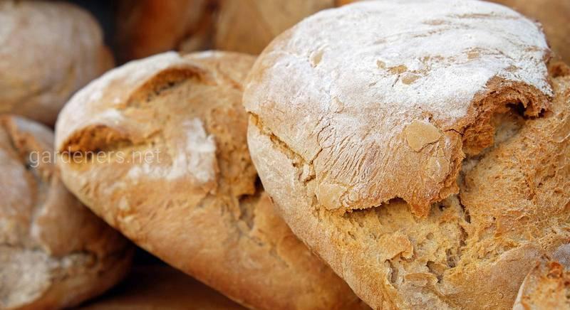 Три правила і п'ять простих кроків в приготуванні домашнього хліба