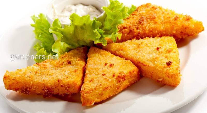 Найсмачніші і прості страви з сирами