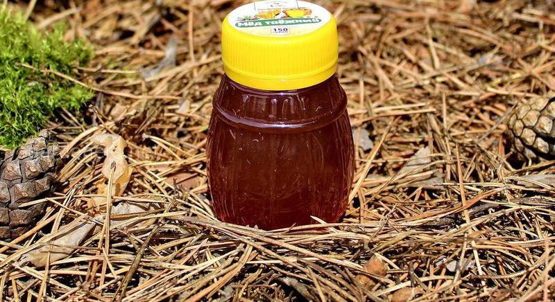 Тайговий мед: опис і властивості