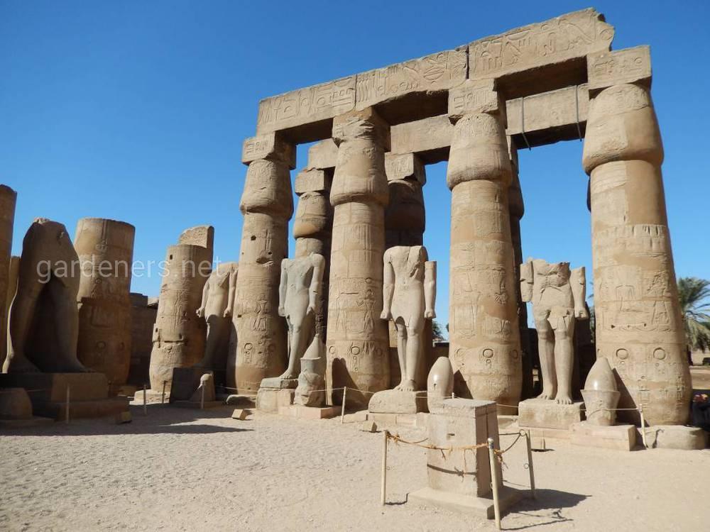 Цікаві факти про Стародавній Єгипет