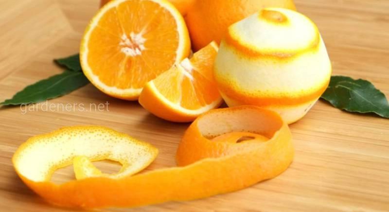 10 способов использования апельсиновой кожуры в домашнем хозяйстве