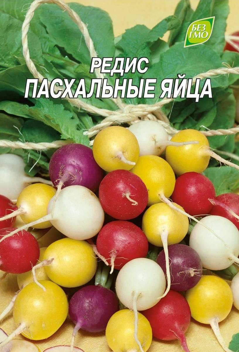 Сорт редиса Пасхальные яйца
