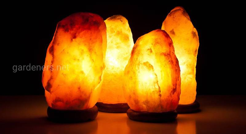 Сольова лампа: з якою метою та як застосовувати цей освітлювальний прилад