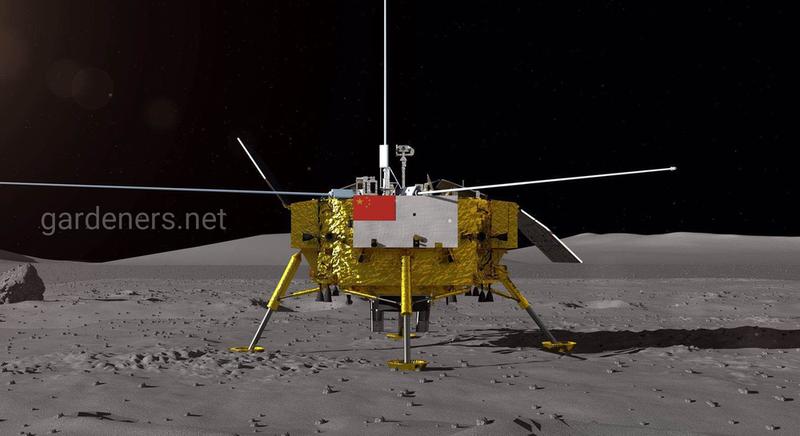 Вдалий експеримент китайських вчених в космосі
