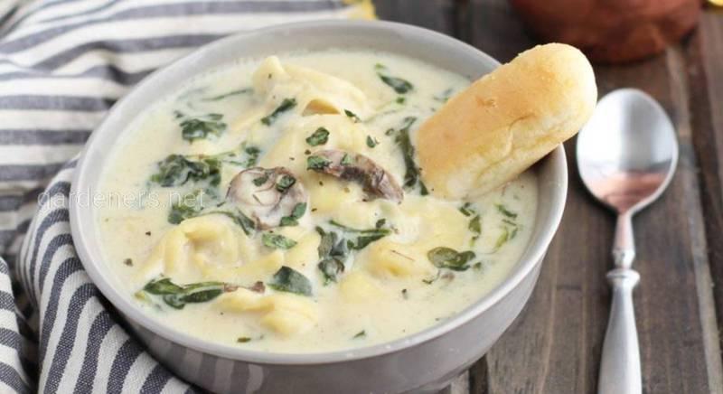 Швидкий рецепт грибного супу!