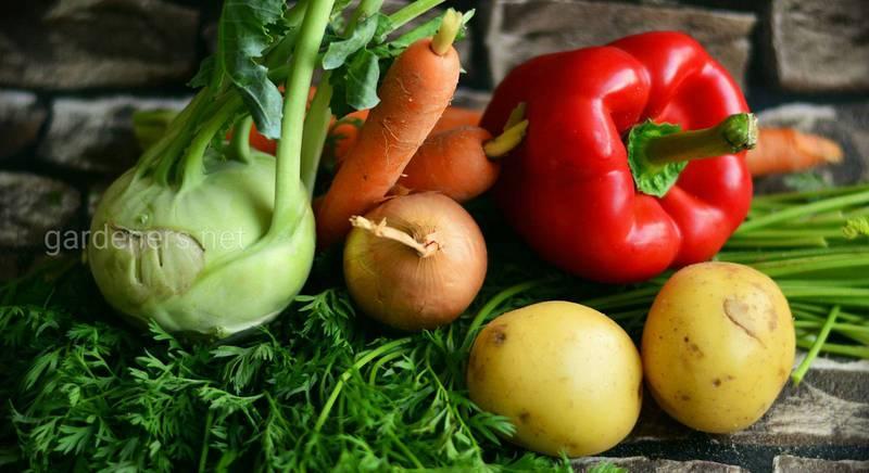 """""""Совместное"""" хранение овощей"""