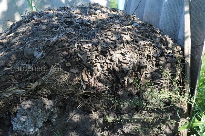 В чому переваги компостування подрібнених рослинних залишків?