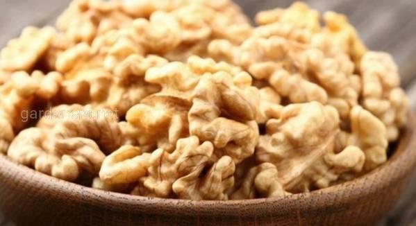 Грецкий орех заботится о всём вашем организме