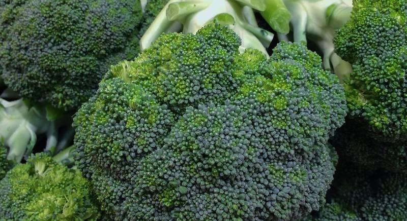 ТОП-5 лучших среднеранних сортов капусты брокколи