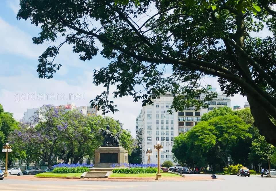 Буэнос-Айрес. Зеленый город