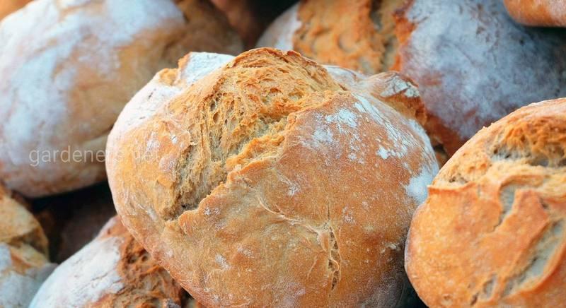 Какие приправы использовать для выпечки и хлеба
