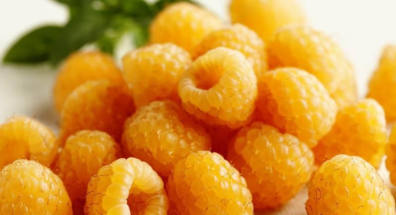желтая малина.jpg