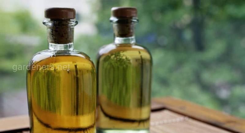 Как использовать касторовое масло на огороде в качестве удобрения