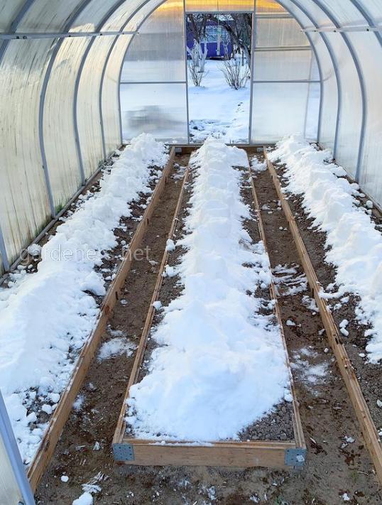 Закидывать снег в теплицу
