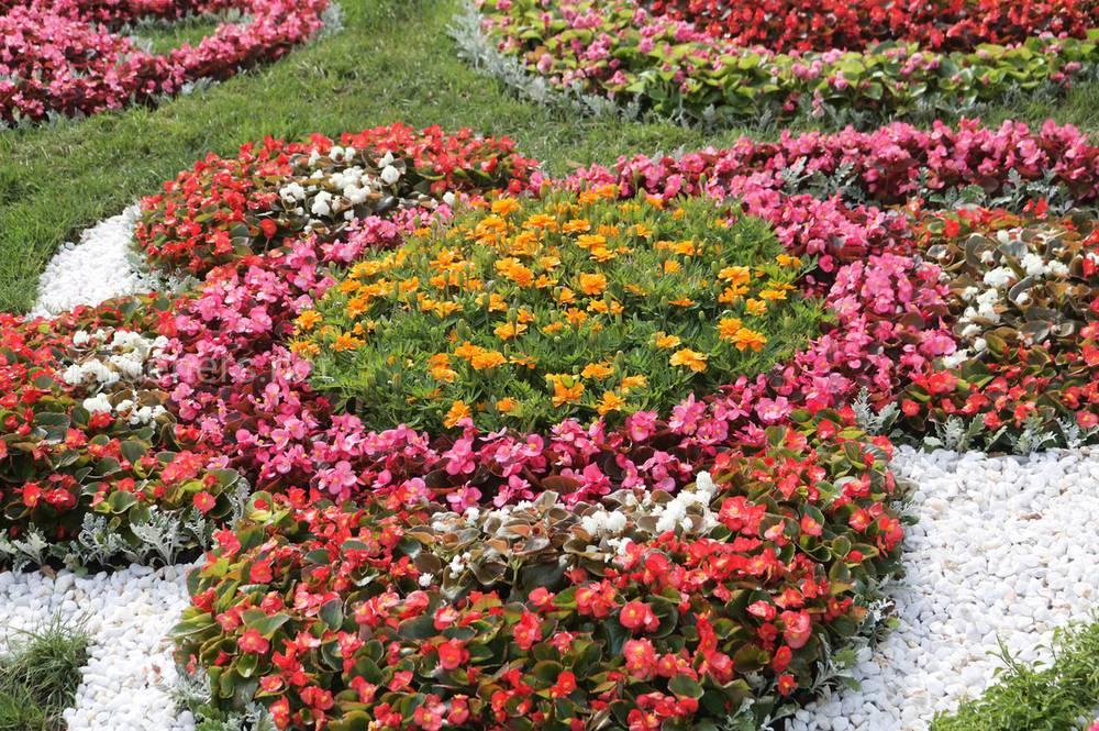 Декоруємо сад