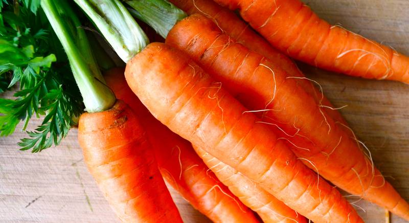 Среднепоздние сорта моркови: Берликумер, Карлена, Талисман