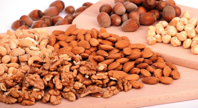 полезные орехи.jpg