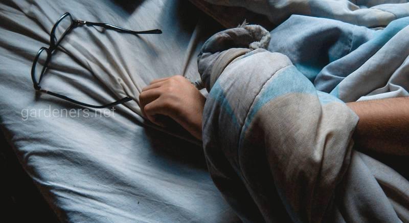 Ложка меда перед сном помогает от бессонницы.