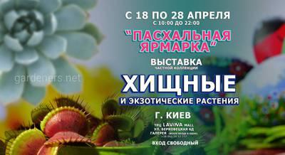 18-28-апреля-киев-FB.jpg