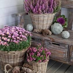 """Квіти """"FLOWER"""""""