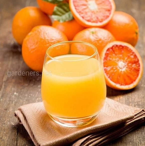 Як зробити апельсиновий сік вдома