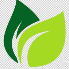 КФХ «Кветки Палесся» производитель рассады цветов, кустов, деревьев