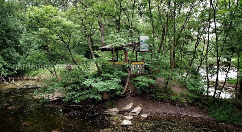 Трикратский лес. Небольшое рукотворное чудо природы