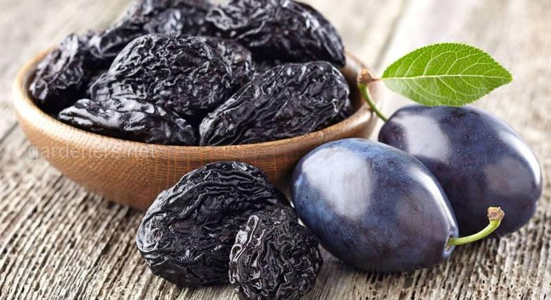 Сорта сливы для чернослива