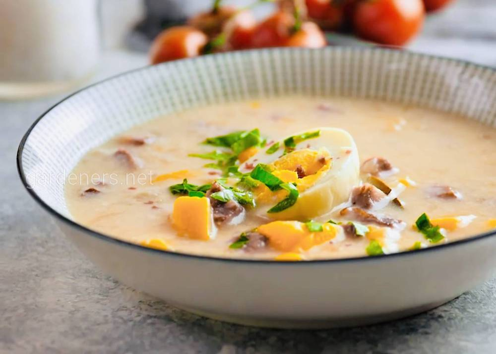 Королевский традиционный суп из Польши