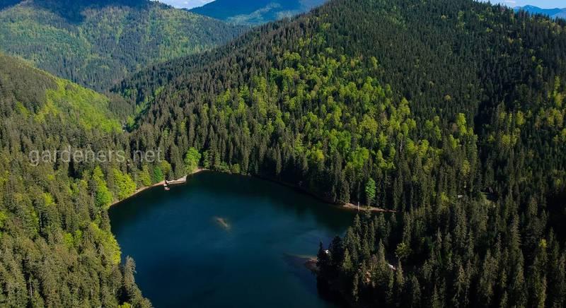 Лучшие парки Украины: где стоит побывать туристам