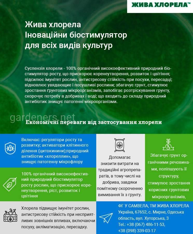 Топ-12 популярних Еко-Технологій серед агровиробників (2)