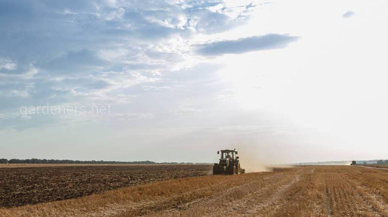 Почему важен анализ почвы после сбора урожая пшеницы?