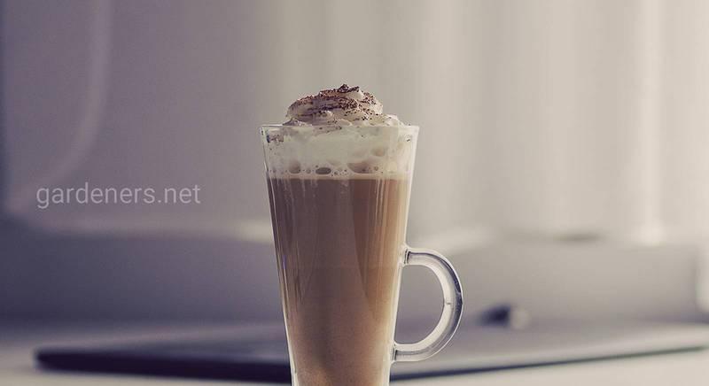 Как приготовить кофе с бейлисом дома