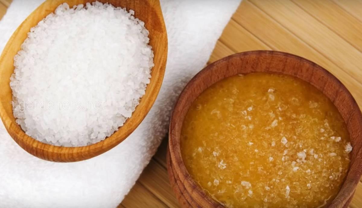 Чтобы десна не кровоточили мед с солью