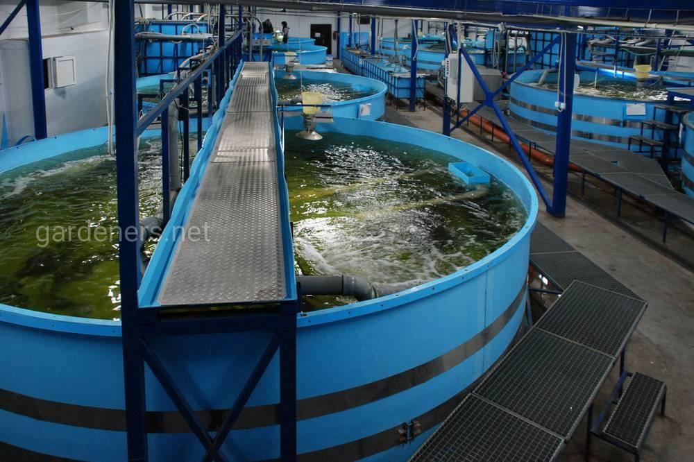 Установка замкнутого водоснабжения.