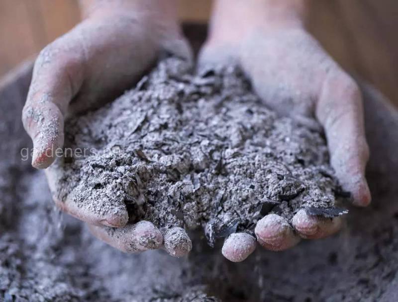 Пепел - улучшитесь почвы и стимулятор роста растений