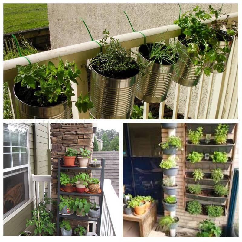Перетворіть балкони та тераси в оазиси домашньої їжі