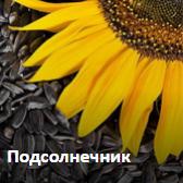sezon.com.ua
