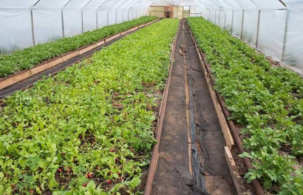 Fresh Hub - натуральные органические продукты для здоровья и красоты!