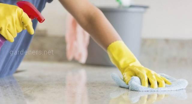 Як правильно проводити дезинфекцію в квартирі та приватному будинку?