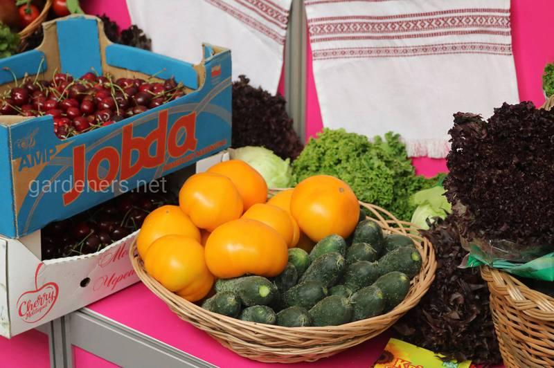Пестициди в продуктах. Де саме вони накопичуються?